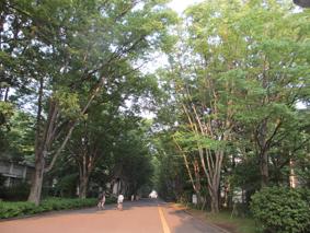 2013-08-03-02.JPG
