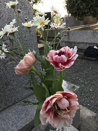 2018-04-04-02.JPG